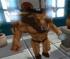 Minotaur Sklep (3D)